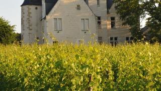 Château de la Roche en Loire - Azay-le-Rideau