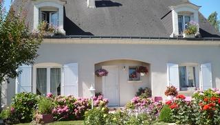 Les Hortensias - Azay-le-Rideau