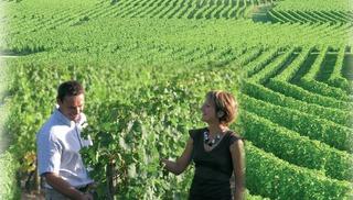Vignoble de la Jarnoterie - Saint-Nicolas-de-Bourgueil