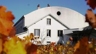 Cave des Vins de Bourgueil - Restigné